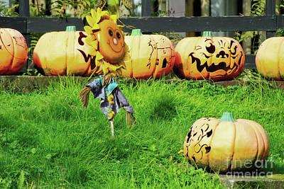 Photograph - Pumpkin Patch Art by Doc Braham