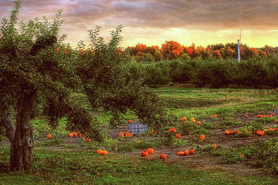 Autumn Scenes Photograph - Pumpkin Patch by Joann Vitali