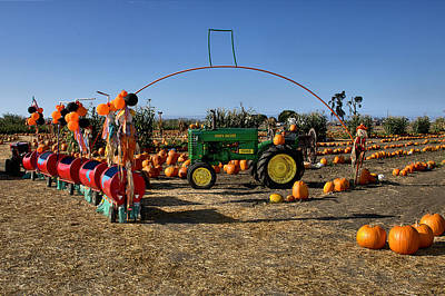 Photograph - Pumpkin Patch by Michael Gordon