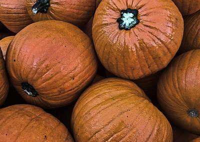 Photograph - Pumpkin Patch by Nathan Little