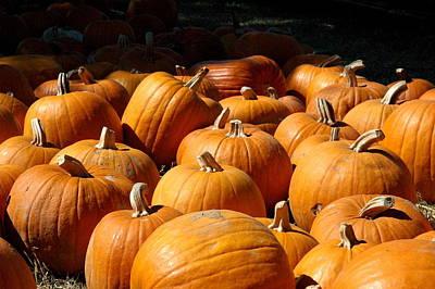 Photograph - Pumpkin Patch by Teresa Blanton