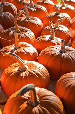 Photograph - Pumpkin Patch by Willard Killough III