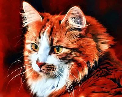 Coon Cat Digital Art - Pumpkin Pete by Scott Wallace