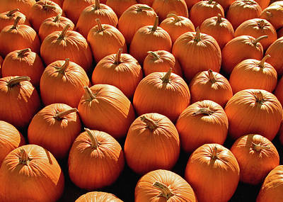 Photograph - Pumpkin Pile by Todd Klassy