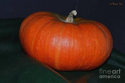 Photograph - Pumpkin Season by Felicia Tica
