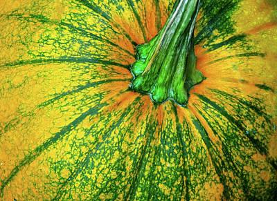 Pumpkin Season Art Print by JAMART Photography