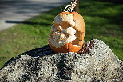 Photograph - Pumpkin Skull by Tom Cochran
