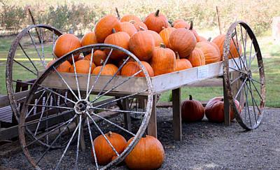 How To Take Photograph - Pumpkin Spice by Lornna Nunez