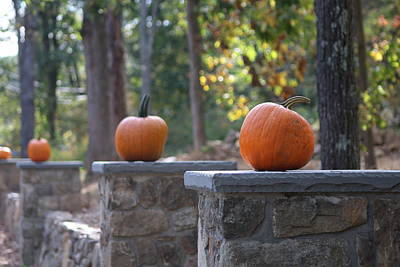 Photograph - Pumpkin Stone Wall by Living Color Photography Lorraine Lynch