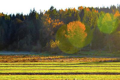 Photograph - Pumpkin Sunset by Brian O'Kelly