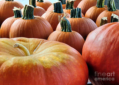 Photograph - Pumpkin Time by Janice Drew