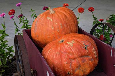 Photograph - Pumpkin Wagon And Dahlias by Tom Cochran