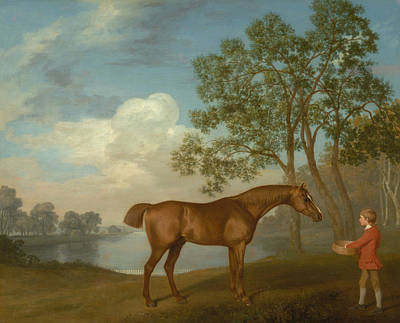 Painting - Pumpkin With A Stable-lad by George Stubbs
