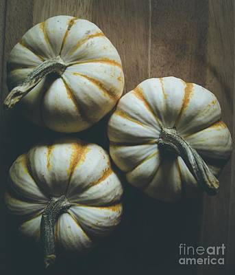 Photograph - Pumpkins 10 by Andrea Anderegg