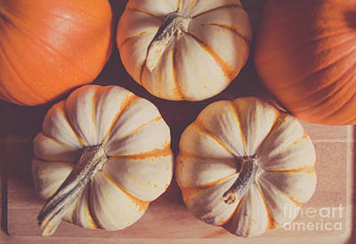 Photograph - Pumpkins 3 by Andrea Anderegg