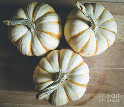Photograph - Pumpkins 5 by Andrea Anderegg