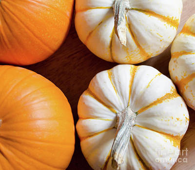 Photograph - Pumpkins 6 by Andrea Anderegg
