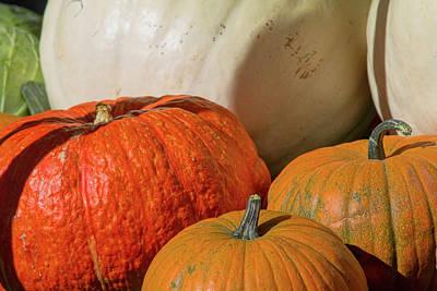 Photograph - Pumpkins by Alana Thrower