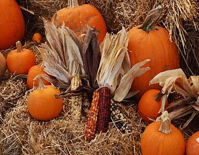 Photograph - Pumpkins And Corn by Michael Thomas