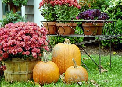 Pumpkins And Flowers Art Print by Linda Drown