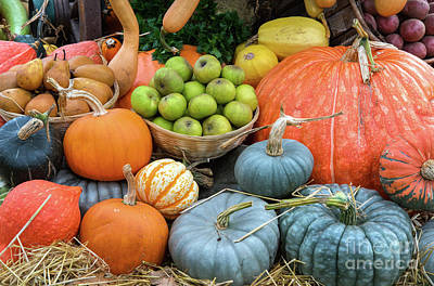 Photograph - Pumpkins And Fruit by Tim Gainey