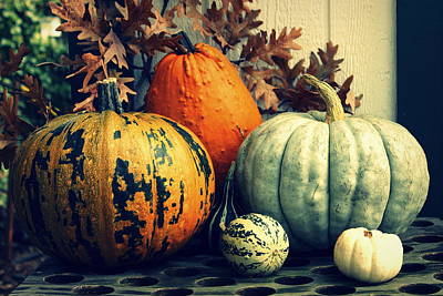 Photograph - Pumpkins And Gourds by Joseph Skompski