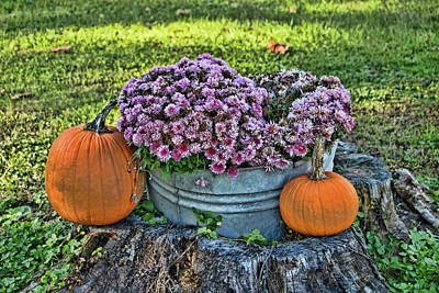 Photograph - Pumpkins And Mums by Allen Beatty