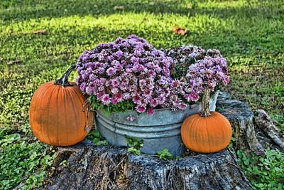 Pumpkins And Mums Art Print