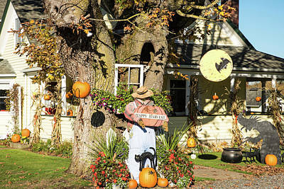 Photograph - Pumpkins And Spiders In Nooksack by Tom Cochran