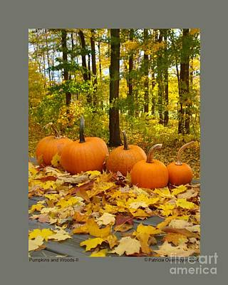 Photograph - Pumpkins And Woods-ii by Patricia Overmoyer