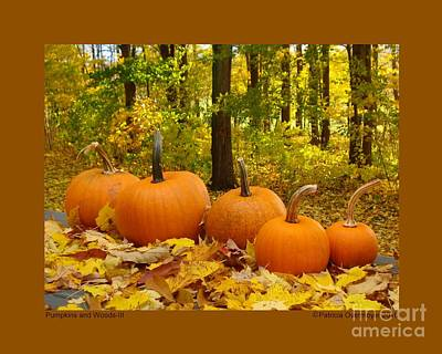 Photograph - Pumpkins And Woods-iii by Patricia Overmoyer