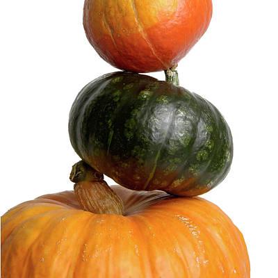 Cucurbitaceae Photograph - Pumpkins by Bernard Jaubert