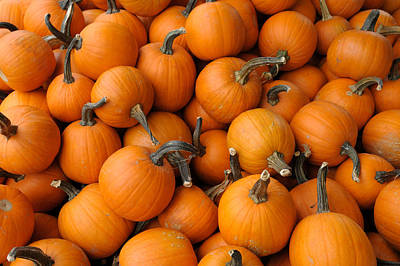 Photograph - Pumpkins by Bradford Martin