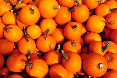 Photograph - Pumpkins by David Arment