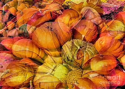 Photograph - Pumpkins Floral Composite  by Janice Drew