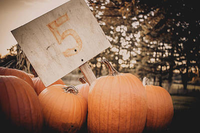Photograph - Pumpkins For Sale by Jeanette Fellows