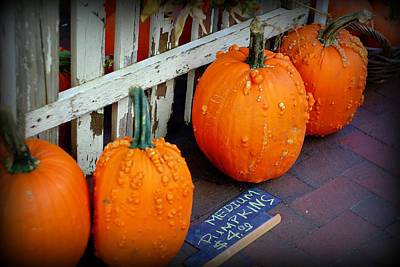 Photograph - Pumpkins For Sale by Linda Mishler