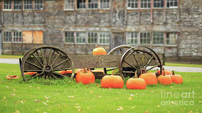 Photograph - Pumpkins For Sale Stowe Vermont by Edward Fielding