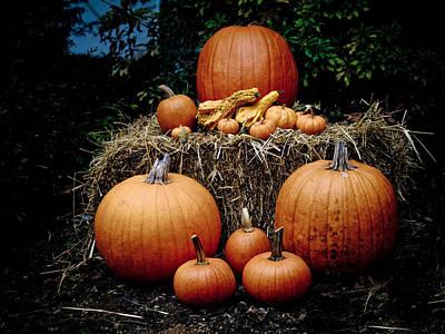 Photograph - Pumpkins In The Dark by Jim DeLillo