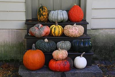 Photograph - Pumpkins by Kathryn Meyer