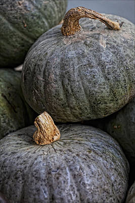 Pumpkins Of Another Color Art Print