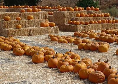 Fall Scenes Photograph - Pumpkins On Bales by Carol Groenen