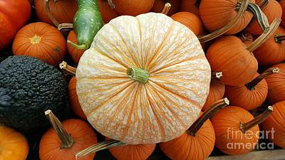 Giuseppe Cristiano Royalty Free Images - Pumpkins On Crate Royalty-Free Image by Lisa Pfeiffer