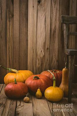 Pumpkins Variety Art Print by Mythja  Photography