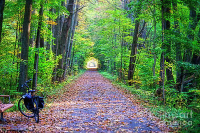 Photograph - Pumpkinvine Trail In Fall Colors by David Arment