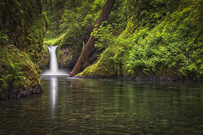 Photograph - Punch Bowl Falls by Chris Reed