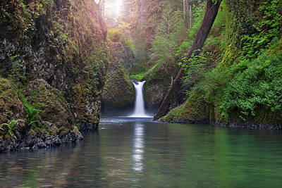 Stream Photograph - Punch Bowl Falls by David Gn