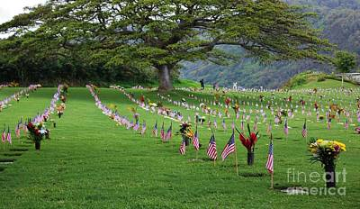 Photograph - Punchbowl Cemetery 2014 by Craig Wood