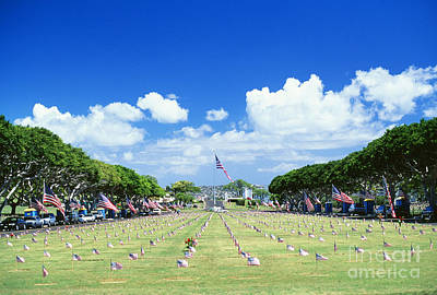 Punchbowl Cemetery Art Print by Vince Cavataio - Printscapes