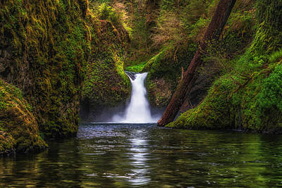 Photograph - Punchbowl Falls by Chuck Jason